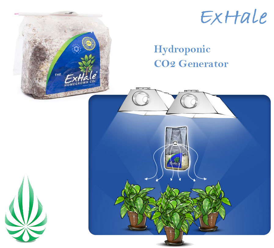 Hydroponics CO2 exhale.jpg