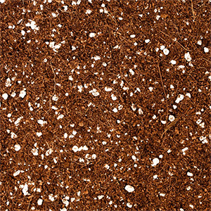 Nutrifield premium COCO perlite mix grow media